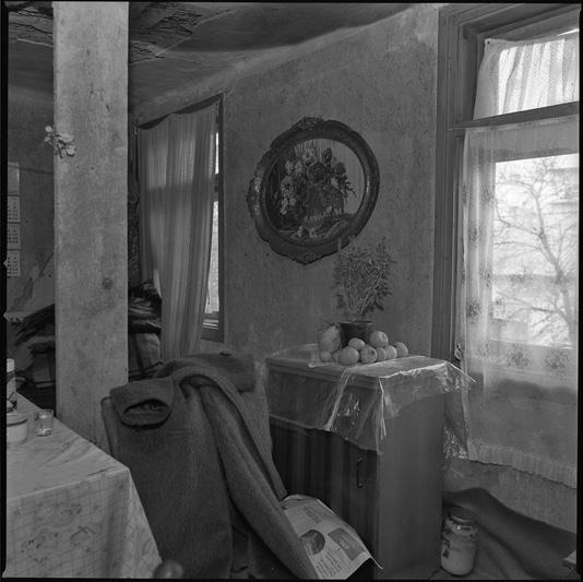 BORIS CVJETANOVIC foto studio city (27)