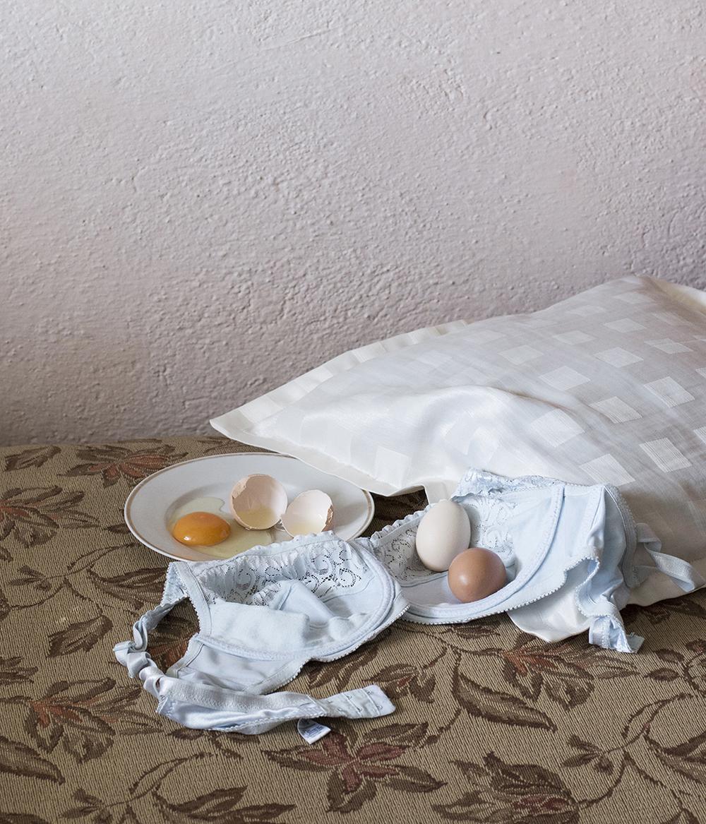 Magdalena Ptiček, Mrtva priroda - Prešućivano