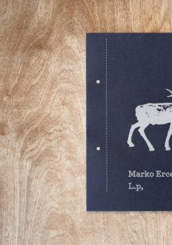 Marko Ercegovic LP Knjiga3
