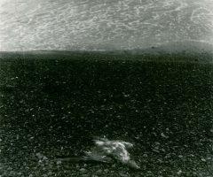 Horvat-Skagen-1963